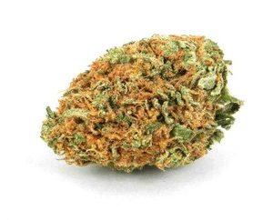 Buy C4 Weed Strain UK