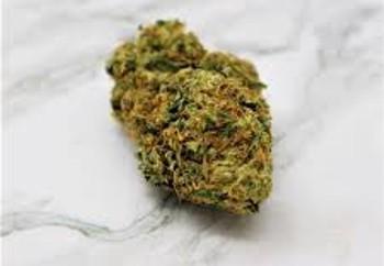 Jericho Haze Marijuana Strain UK